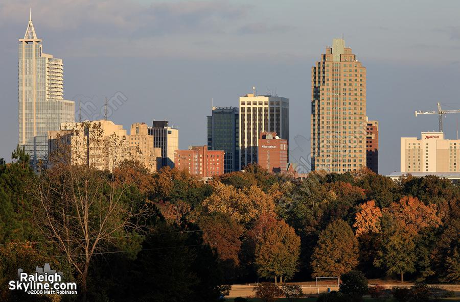Raleigh Autumn Season Colors