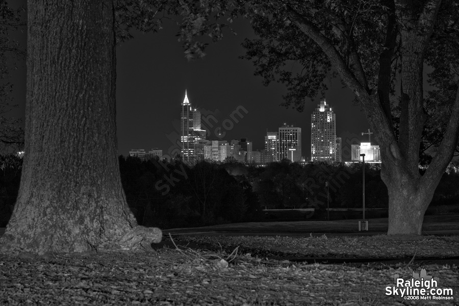 Black and While Raleigh Skyline