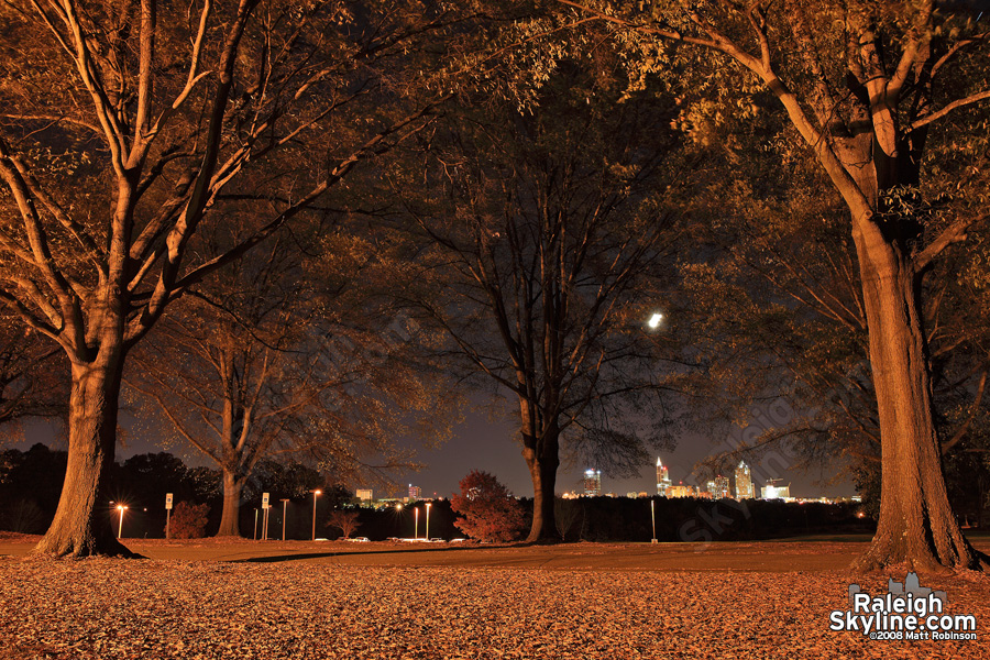 Autumn night from Dorothea Dix