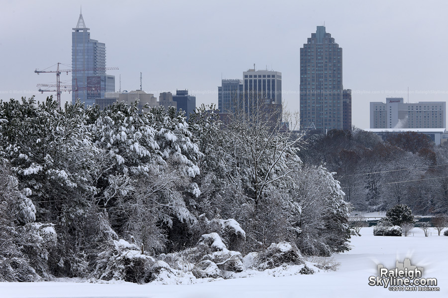 Snowy white day after Christmas in Raleigh