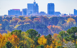 Downtown Raleigh Autumn Colors 2017