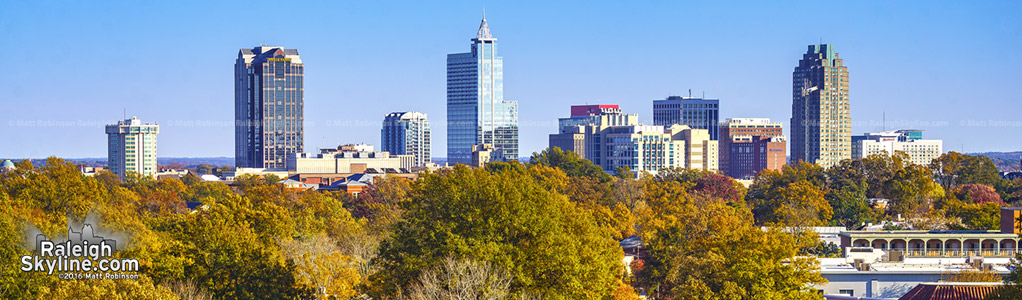 Downtown Raleigh Fall Foliage 2016